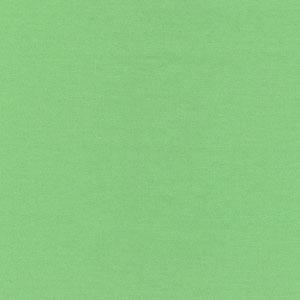 Fabric Finders 15 Yd Bolt 9.34 A Yd Lime 100 percent Pima Cotton 60 inch Twill